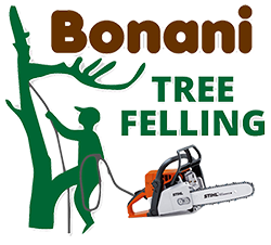 Bonani Tree Felling